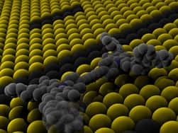 Smallest car is made of single molecule