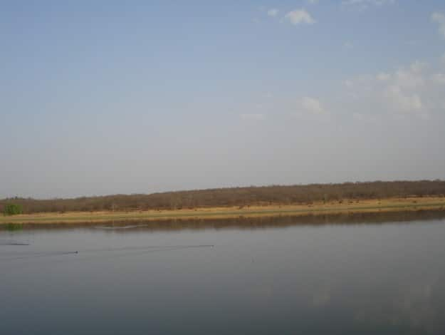 Madhav_National_Park1