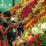 flower-show-ooty