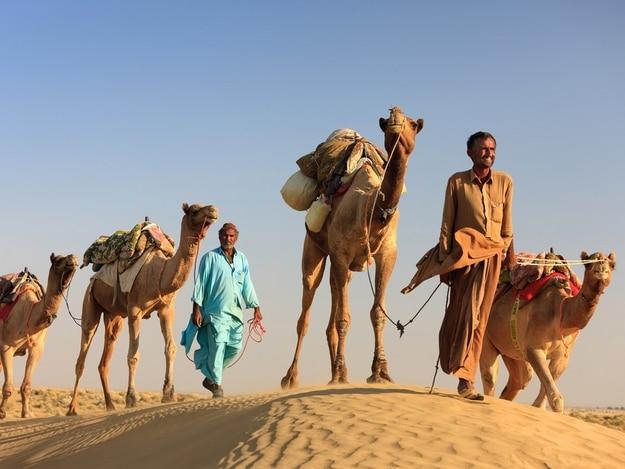 jaisalmer-camel-safari2