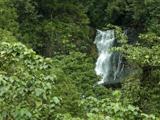 kadambi falls