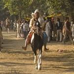 horse-riding-matheram