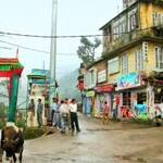 shopping-dharamsala