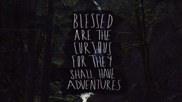 Blessed-are-the-curious