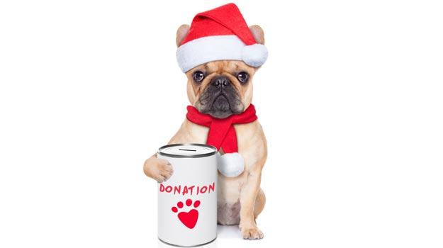 Kerala-Christmas-donation