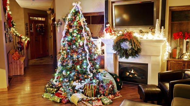 Kerala-Christmas-tree