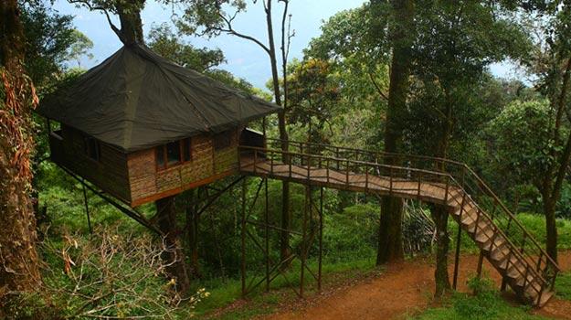 Nature-Zone-Munnar