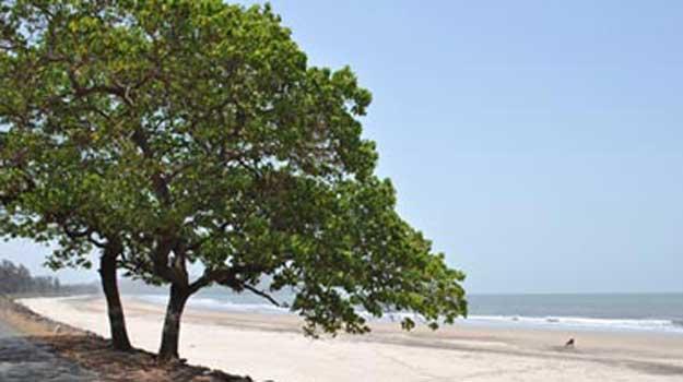 Aaravi-beach