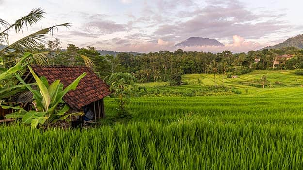 28-Indonesia-Bali-shutterstock_366608276