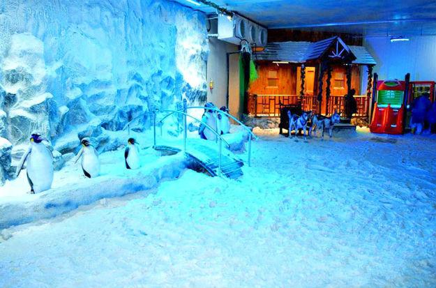 snow city pune