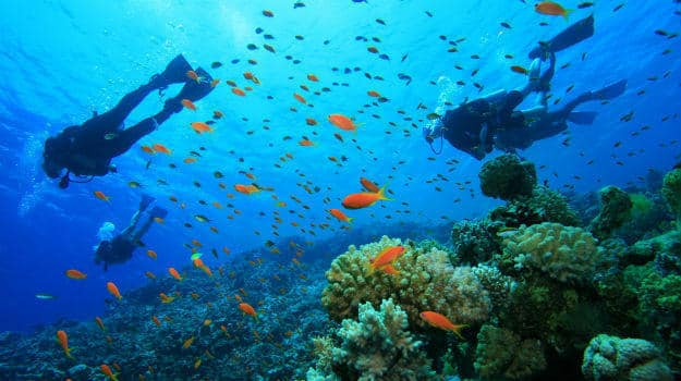 Best Places To Go Scuba Diving In India Indiacom - 6 amazing underwater attractions
