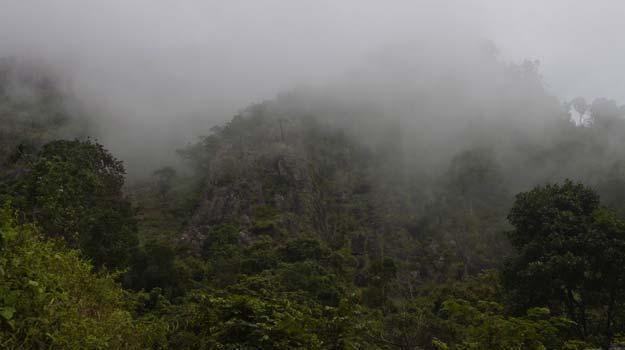 Nilgiri-mountains,-India
