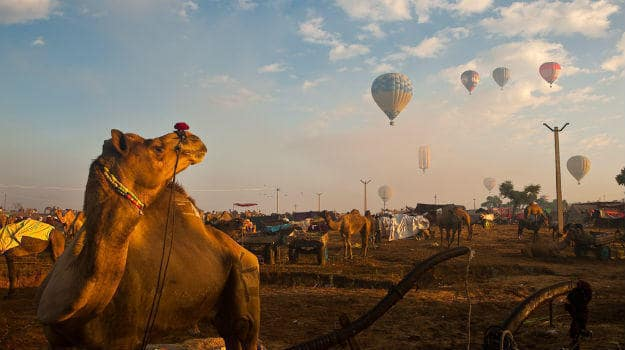 Hot air balloons over Pushkar