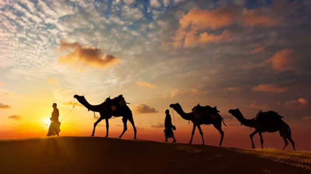7-Jaisalmer