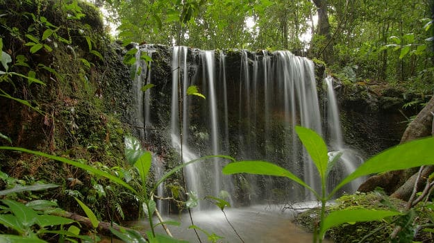 Monsoon holidays 2017: 5 reasons why you must visit Agumbe in Karnataka this monsoon