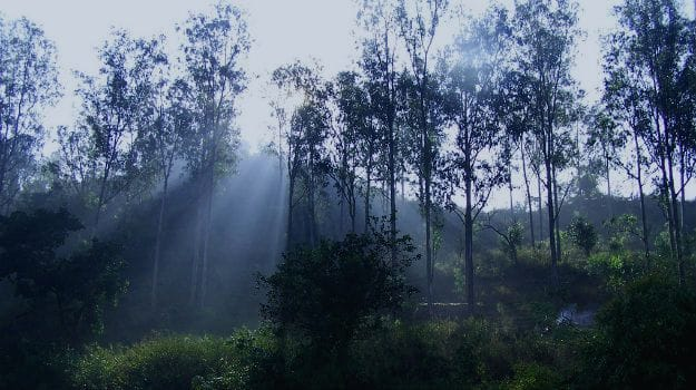Araku Valley, Photograph courtesy: vijay_cc/ creative commons