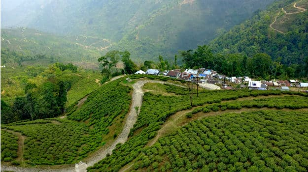 4Travel-Darjeeling