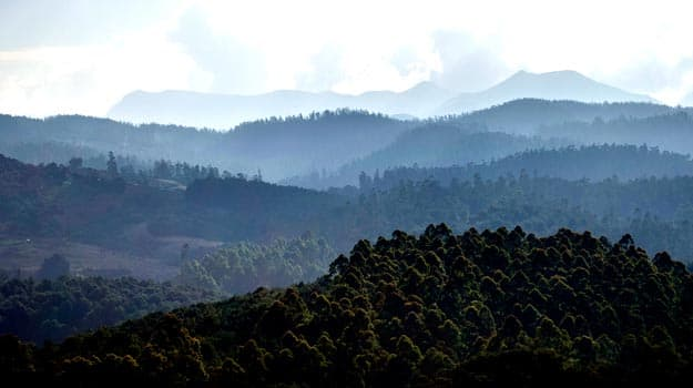 Ooty, Photograph courtesy: Mo Shine/Creative Commons