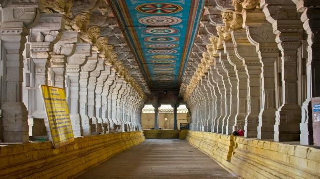 kerala elephant wallpapers