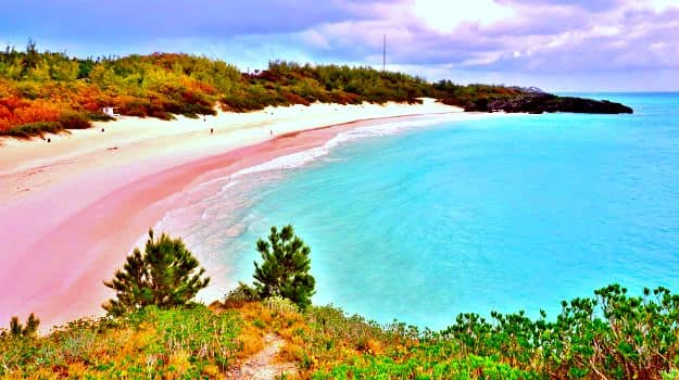 18-travel-pink sand beach-bermuda