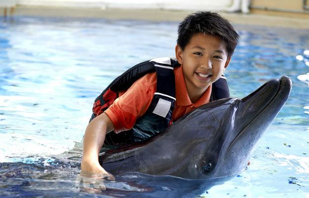 22-ocean-theme-park-hong-kong-1