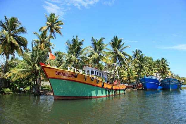 5Kerala-offbeat-Ashtamudi-lake-shutterstock_278384510