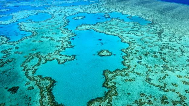 Queensland-Great-barrier-reef-shutterstock_358055927