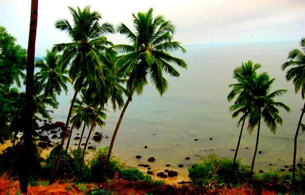 Photograph courtesy: Goa Observer/Creative Commons