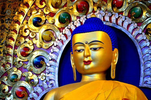 9-travel-dharamsala-6