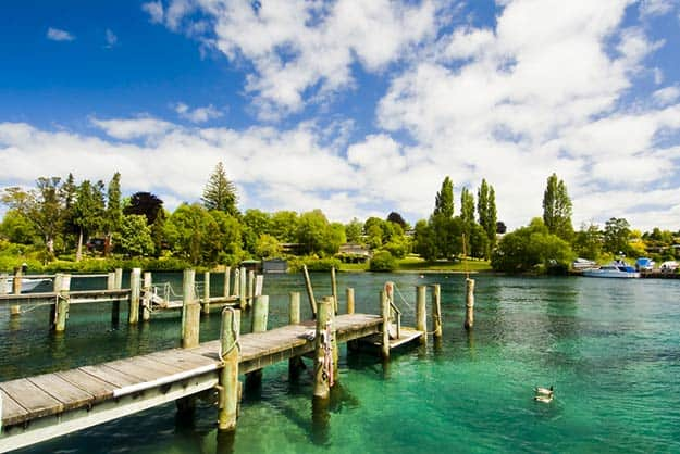 how to travel from india to new zealand