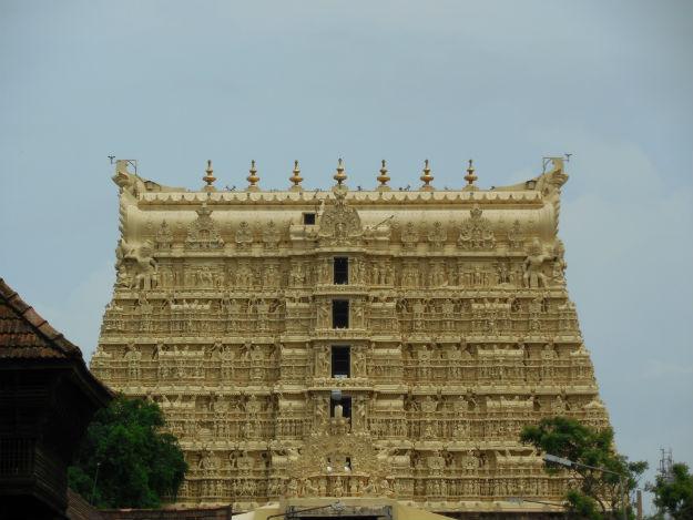 Image: Aravind Sivaraj/Wikimedia commons