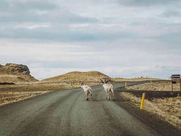 21iceland-roads15