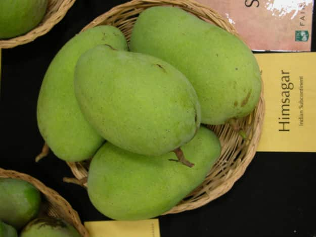 Himsagar