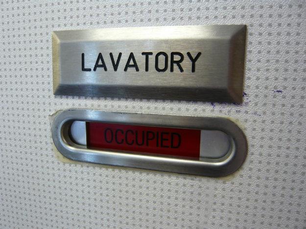 Lavatory door