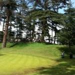 Naldehra-Shimla-hilltop