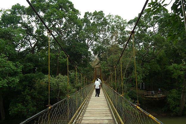 Nisargadhama hanging bridge