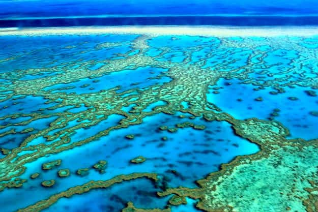 Amazing natural wonders of the world the great barrier for Great pictures of the world