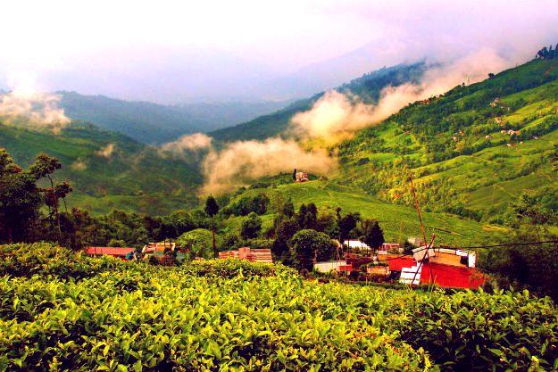 Summer vacation - Shangri-la Regency