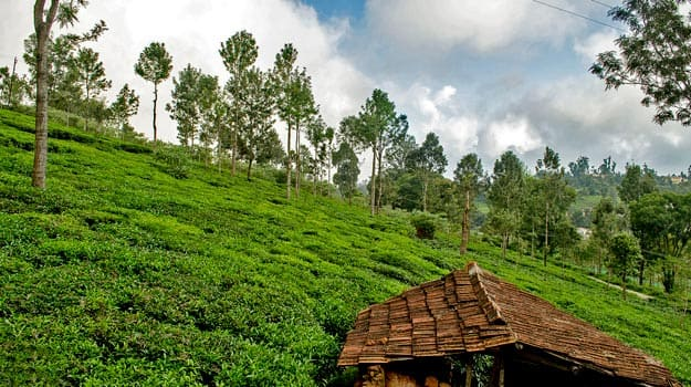 Best Winter Holiday Destinations in Tamil Nadu for 2017