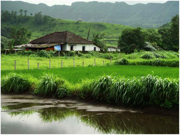 nature paradise satara