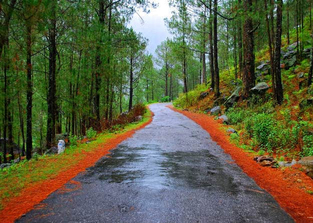 Summer Vacation Package For Uttarakhand Ranikhet Kausani