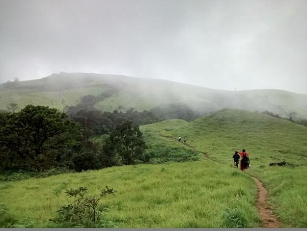 Kodachadri_trail