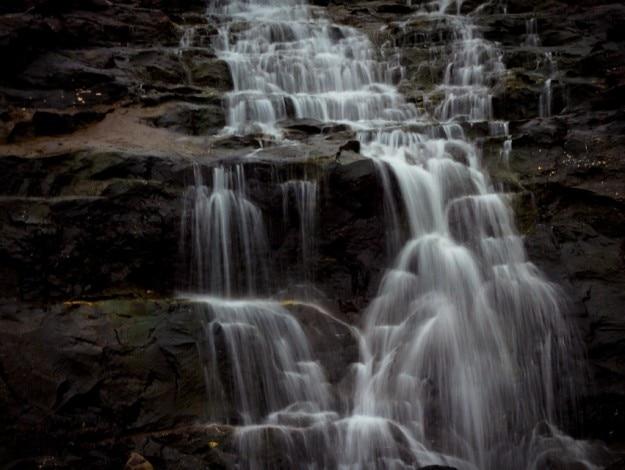 Photograph courtesy: Pranav Prakash/Creative Commons