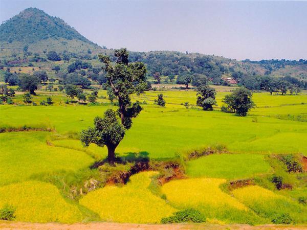 araku-valley-2486_m