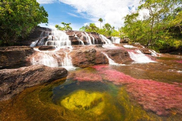 Cano-Cristales-river