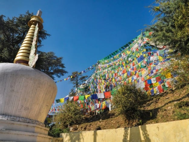 Colorful buddhist prayer flags in town of Dharamshala, Himachal Pradesh, India