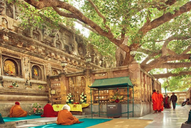 Mahabodhi 3
