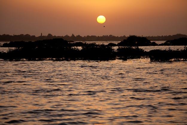Saloum-Delta
