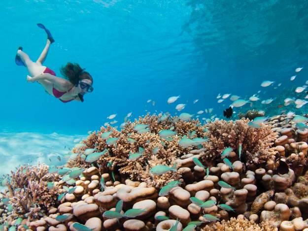 malaika-arora-khan-hot-photos-maldives-resort5