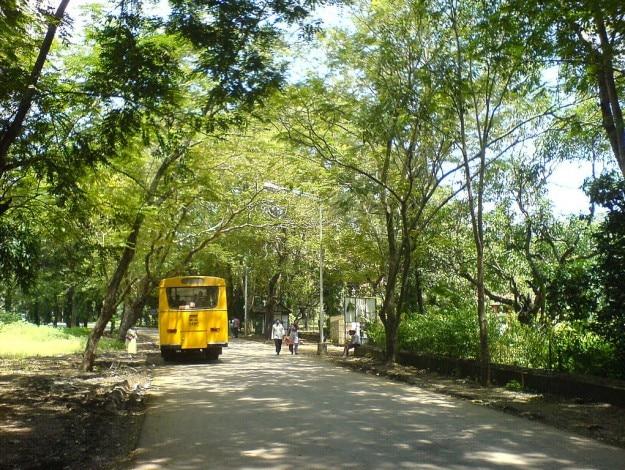 Sanjay_Gandhi_National_Park_(289439070)